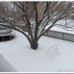 Wordless Wednesday… FIRST SNOW!