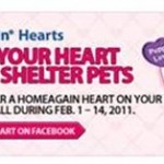 Share Your Heart & Help Shelter Pets
