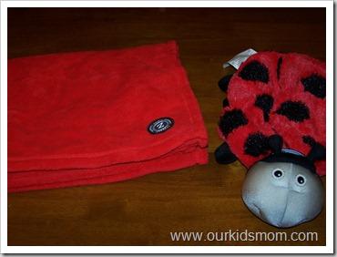 ladybug & dart gun 006