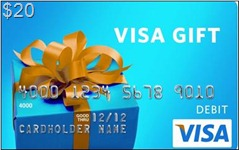 20 Dollar VISA Gift Card