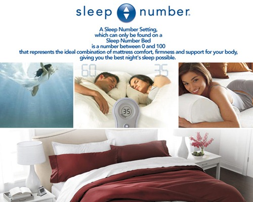 the.sleep.number.store