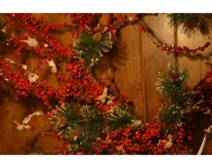 article-new-intro-modal_ehow_images_a07_ca_q2_make-cranberry-wreath-800x800