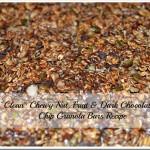 Clean Chewy Nut Fruit & Dark Chocolate Chip Granola Bar Recipe