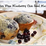 Gluten Free Blueberry Chia Seed Muffin Recipe