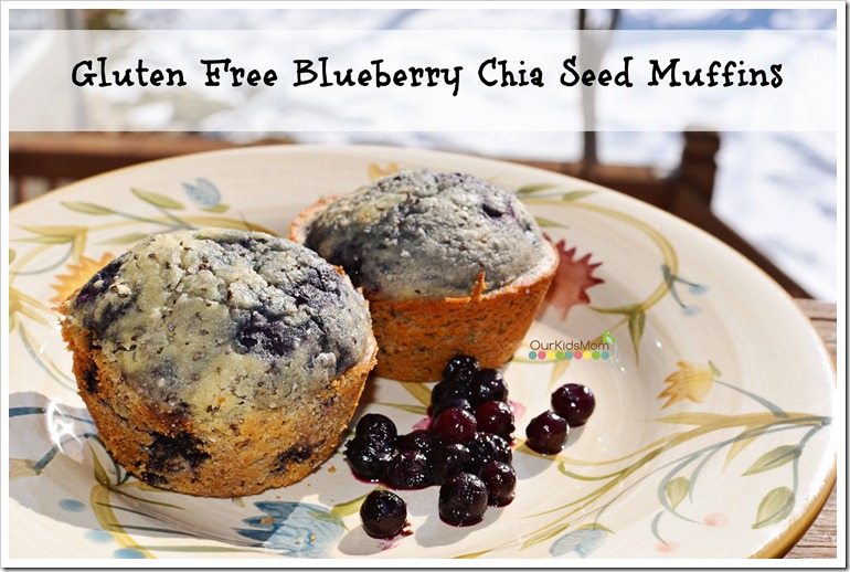 Gluten Free Blueberry Muffins with Chia Seeds Recipe - OurKidsMom
