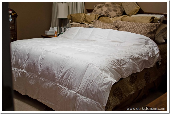 comforter1edit