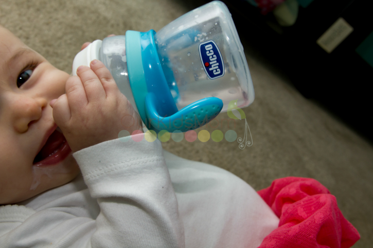 Chicco Naturalfit Bottle Stages -1