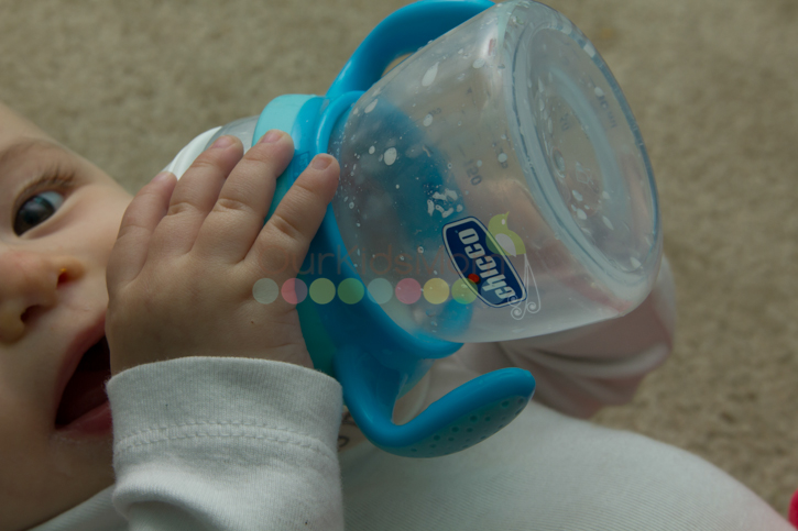 Chicco Naturalfit Bottle Stages -4
