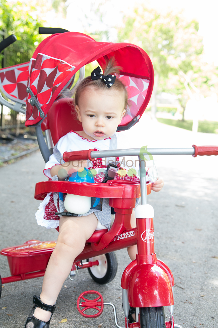Radio Flyer Tricycle -9787