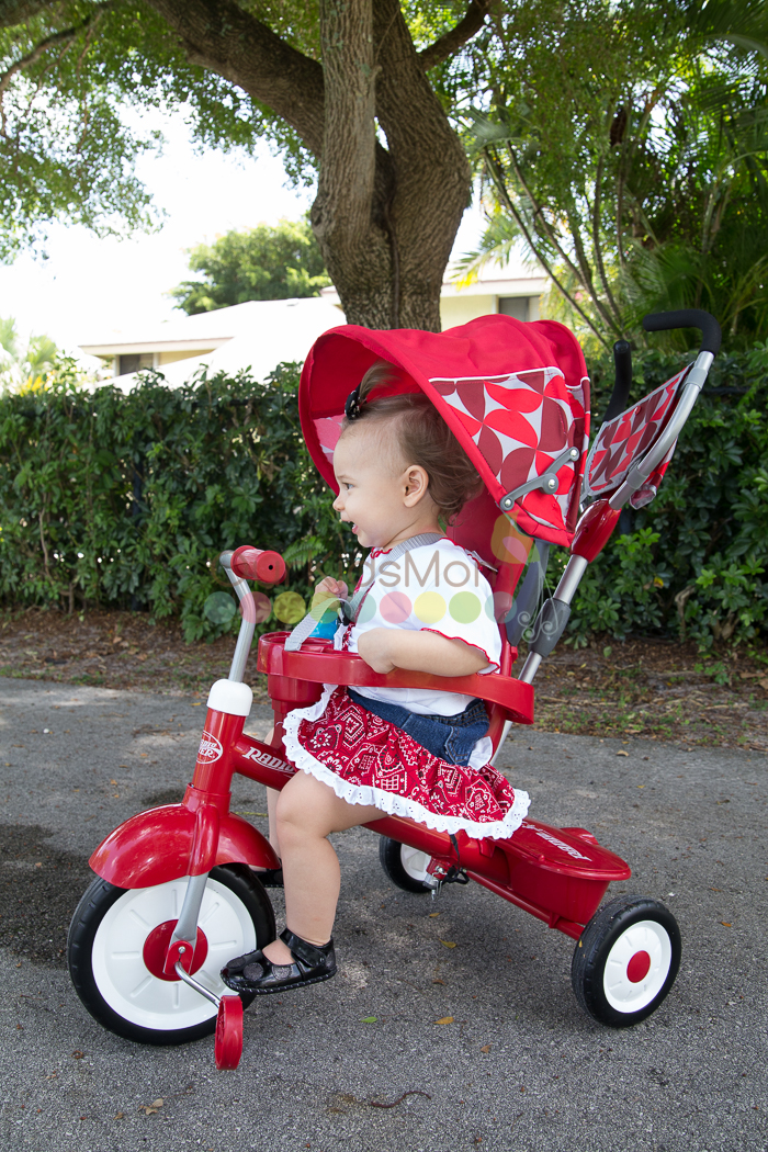 Radio Flyer Tricycle -9804