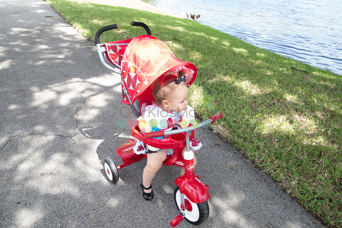 Radio Flyer Tricycle -9822