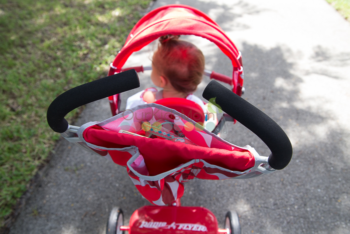 Radio Flyer Tricycle -9825