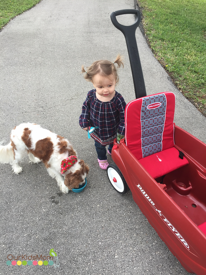 Radio Flyer Wagon Review --8