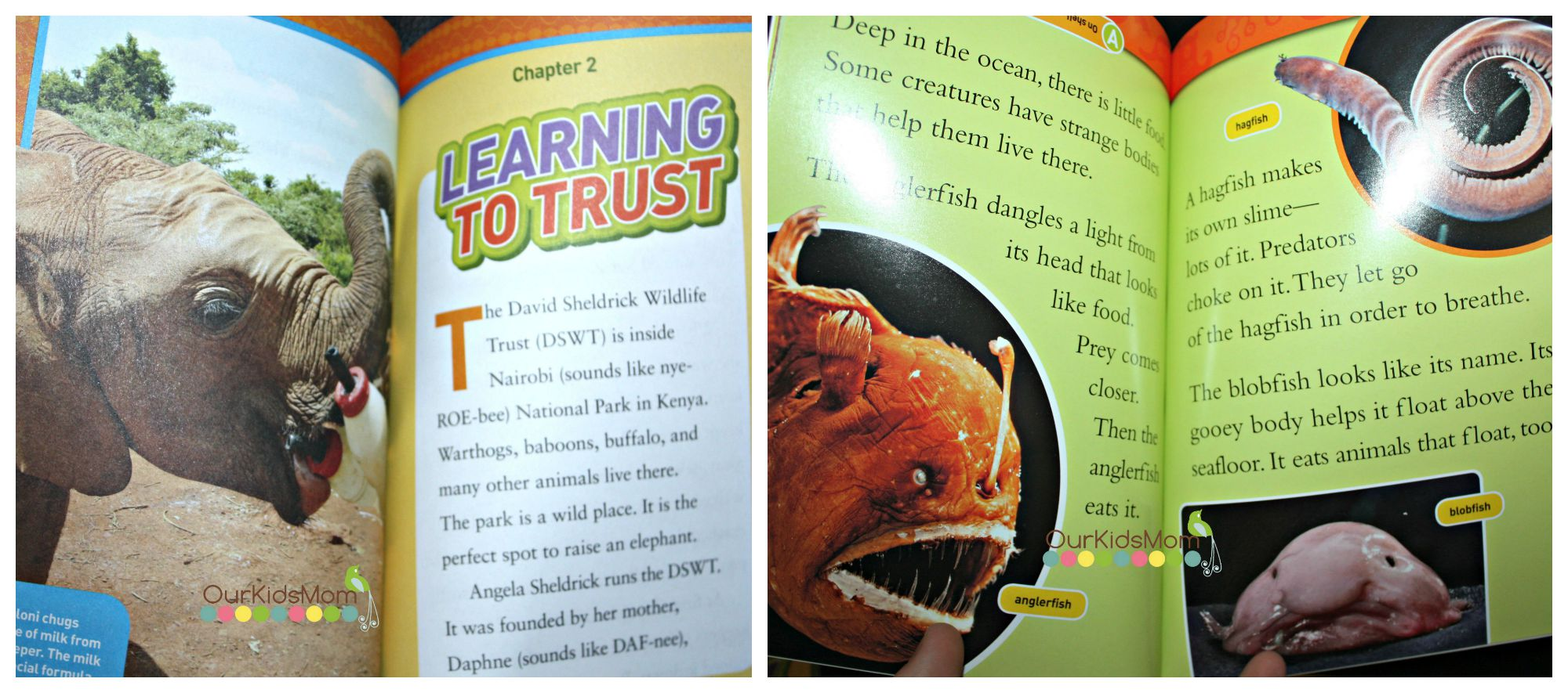 Back to School with National Geographic Kids Books