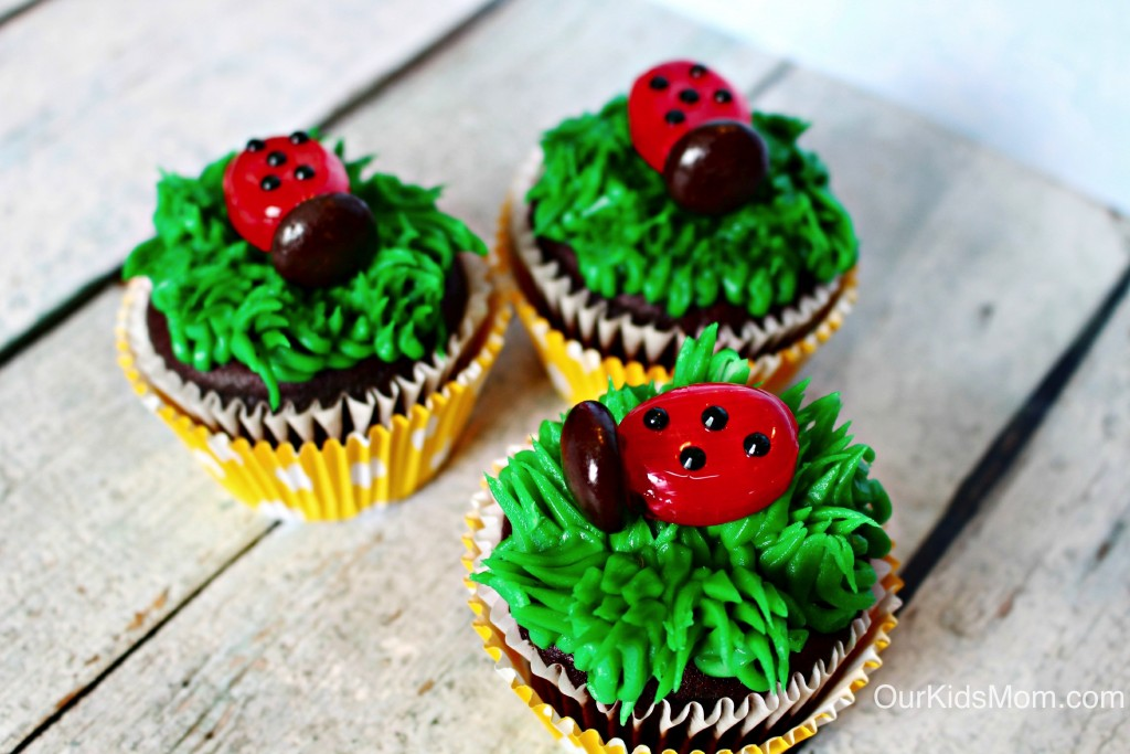 Ladybug 2-3