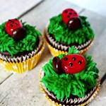 Ladybug Cupcakes | Homemade Chocolate Cupcakes Recipe