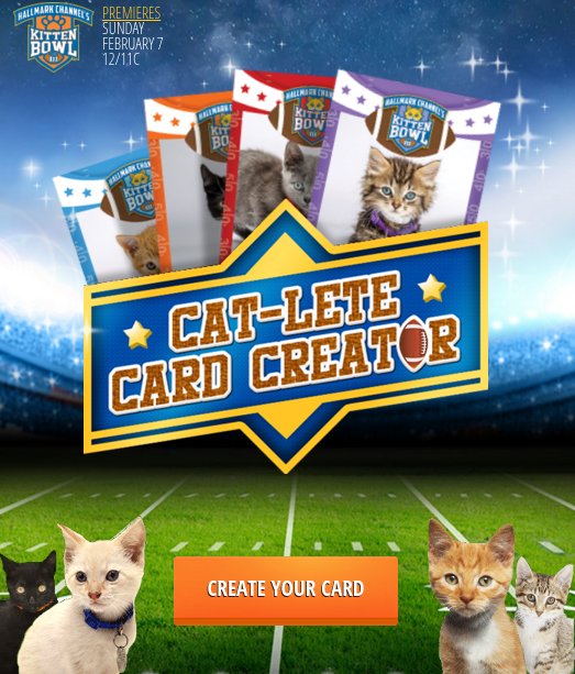 Cat Lete Card Creator