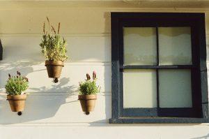window-405861_1280