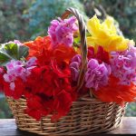 DIY Flower Baskets
