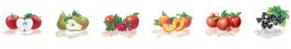 juice flavors